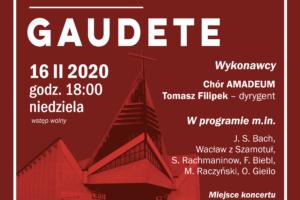 Zapraszamy na Koncert Mistrzejowicki – 16.02.2020 r. godz. 18:00 dolny Kościół