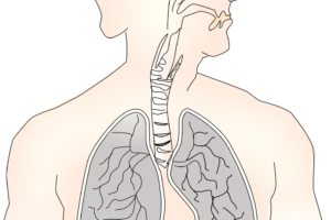 Zbiórka na respirator